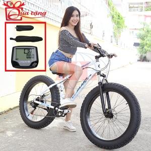 Xe đạp thể thao T54 bánh béo