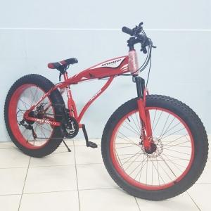 Xe đạp thể thao XDC-Bike