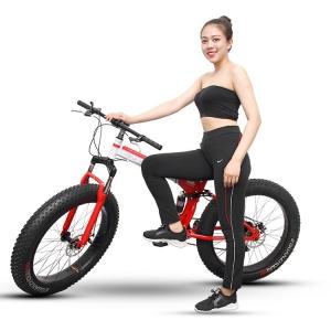 Xe đạp gấp bánh to LV.NA