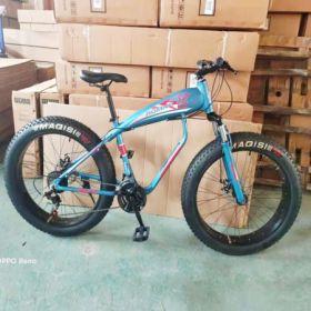Xe đạp bánh to Goodfor G779 (Khung nhôm)