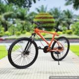 Xe đạp thể thao khung nhôm LX-520