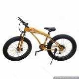 Xe đạp bánh to AOMENA-007(Vàng)